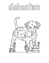 fire dog dalmation colouring page fun colouring