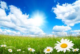 spring wallpaper and screensavers hd collection of spring hd