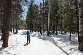 arizona nordic village coconino national forest cross country