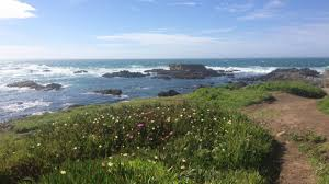 a guide to exploring mendocino county in northern california am