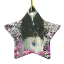 black and white papillon ornaments keepsake ornaments zazzle