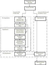 image based measurements for evaluation of pelvic organ prolapse