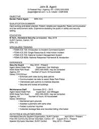 Federal Job Resume Template by Career Services Sample Resumes