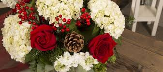 home connells maple lee flowers and gifts flowers plants and
