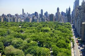spend thanksgiving in new york i here s where to celebrate in the city