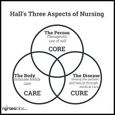lydia hall care cure core nursing theory nursing theory