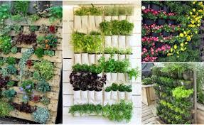 Vertical Garden Ideas 10 Diy Vertical Garden Ideas That You Will Find Helpful