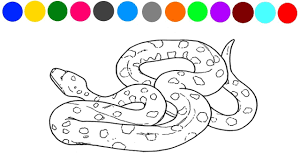 plains garter snake coloring page printable pages click the for