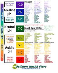 best 25 ph food chart ideas on pinterest acidic food chart