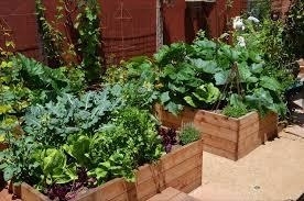 Vegetable Garden Design Ideas Landscaping Network - Backyard garden designs and ideas
