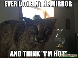 Mirror Meme - ever look in the mirror and think i m hot meme freddie the cat