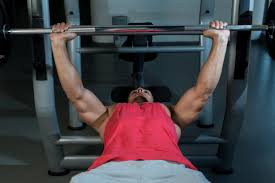 Bench Press Vs Dumbbell Press Flat Bench Press Vs Incline Which Is A Better Chest Builder