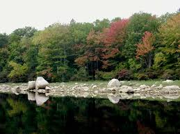 Rhode Island forest images File scituate jpg wikimedia commons jpg