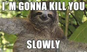 The Sloth Meme - if the sloth would be a serial killer meme on imgur