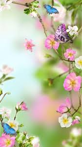 Images Flowers Flowers Live Wallpaper Android Apps On Google Play