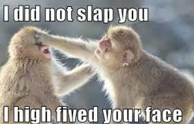 High Five Meme - high five viral viral videos