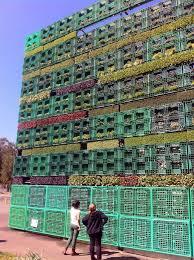 australia plants world u0027s largest pallet garden treehugger
