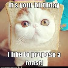 Funny Animal Birthday Memes - 20 most funny birthday meme pictures and images