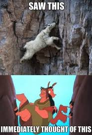 Llama Meme - funny pictures lol meme 2014 llama