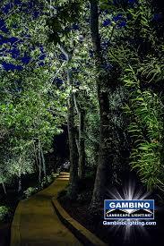 Moonlighting Landscape Lighting Gambino Landscape Lighting Moonlighting