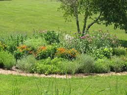native plant garden design designing a native plant butterfly garden u2013 iowa county conservation