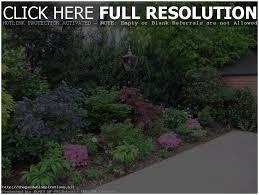 backyards wonderful low maintenance landscaping ideas vancouver