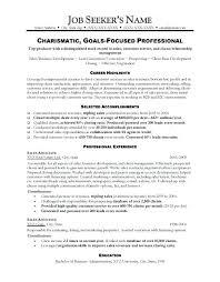 car sales resume sample sales resume sample car sales manager