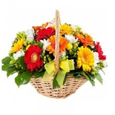 Best Place To Order Flowers Online Jabalpur Online Flowers Cakes Soft Toys And Chocolates Order