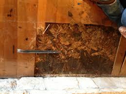 Laminate Flooring Austin Wood Flooring Austin Remodeling Floors Experts Before 2 Loversiq