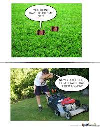Lawn Mower Meme - some lawn that i used to mow by bobthememer meme center