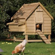 Backyard Chicken Coop For Sale by 3 6 Birds Large Chicken Coop Nest Box Westmount Living