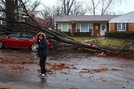 tornado damages homes and downs trees in st louis nbc news