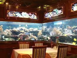 Fish Tank Reception Desk 110 Best Fish Aquariums Images On Pinterest Fish Aquariums