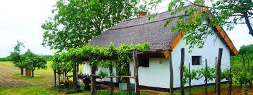 Wohnhaus Kaufen Gesucht Haus Ungarn Haus In Ungarn