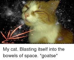 Goatse Meme - my cat blasting itself into the bowels of space goatse meme on me me