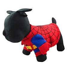 Dog Spider Halloween Costume 7 Spider Dog Costumes Turn Dog Cute Creepy Crawly
