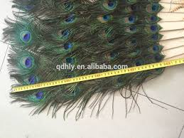 peacock feather fan 170cm five lines wholesale peacock feather wooden fan for