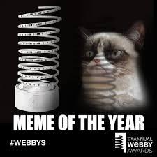 Grumpy Meme - grumpy cat wins meme of the year at the 17th annual webby awards