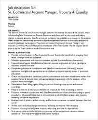 Account Executive Job Description For Resume Team Lead Job Description Document Review Job Description Resume