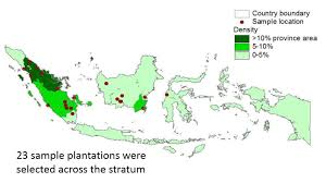 Indonesia World Map by Sustainable Bioenergy And The Sustainable Development Goals In