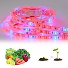 12v dc led grow lights full spectrum led grow lights dc 12v smd 5050 5m led strip light