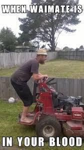 Lawn Mower Meme - the wolf life on twitter nzmeme meme offensive waimate