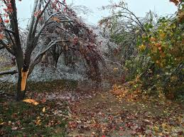 Friday After Thanksgiving Federal Fema Approves Fallin S Request For Federal Assistance After Winter