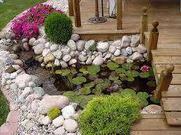 pretty look of backyard which is decorated with beautiful flower