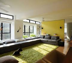 traditional style decorate living room ideas with fresh green for