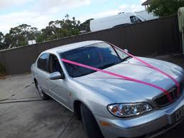 car ribbon custom car ribbon photo by hens hq adelaide sa