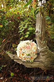 wholesale flowers orlando 14 best wedding venues paradise cove orlando images on