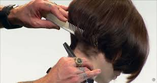 how to cut hair with a weight line how to trim the neckline to add balance visual focus