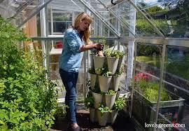 grow a vertical herb garden in a greenstalk planter