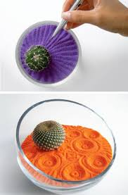 colored sand cactus in colored sand home reviews